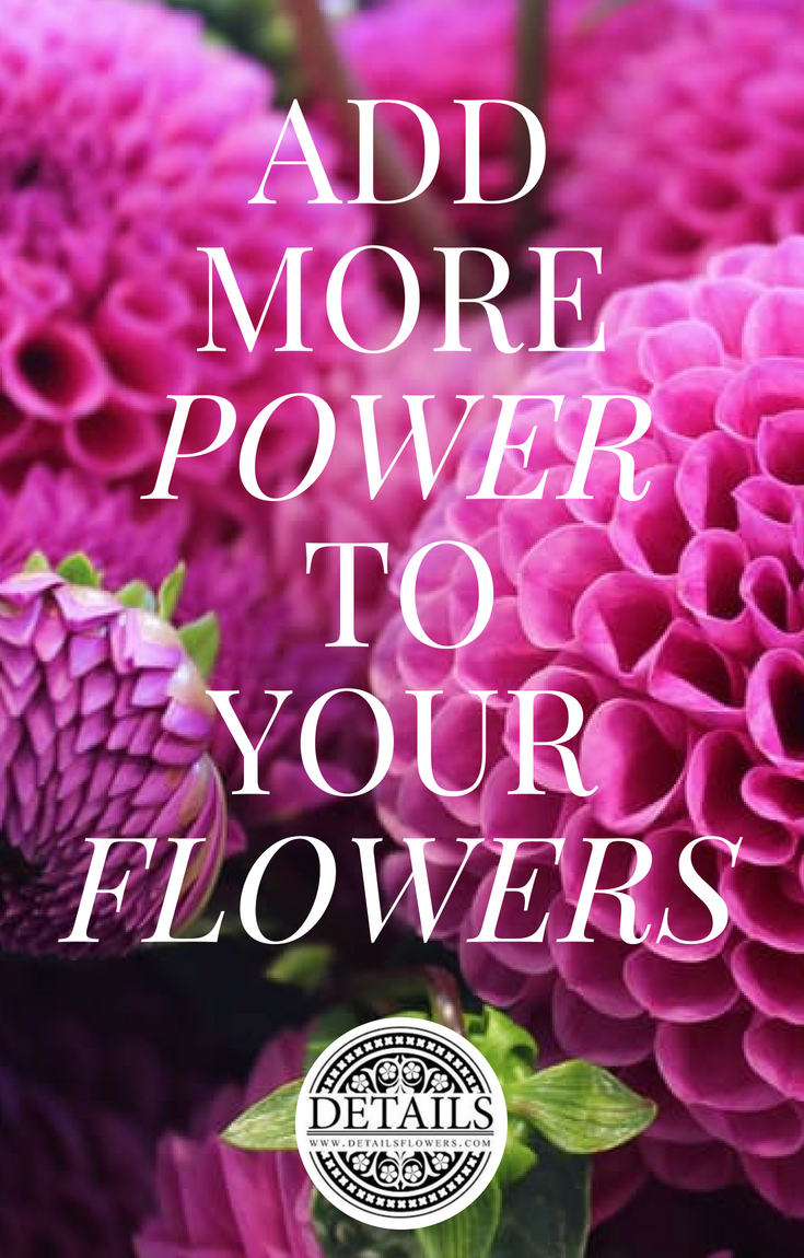Copy of Copy of Details Flowers Tutorials (1)