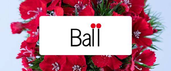 ball-lp